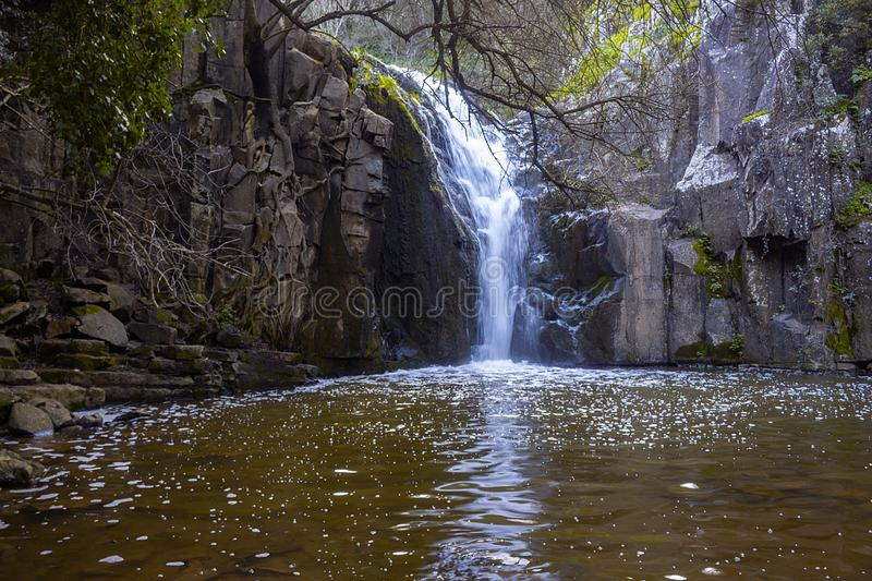 Photo of Waterfall mountain view close up stock photos