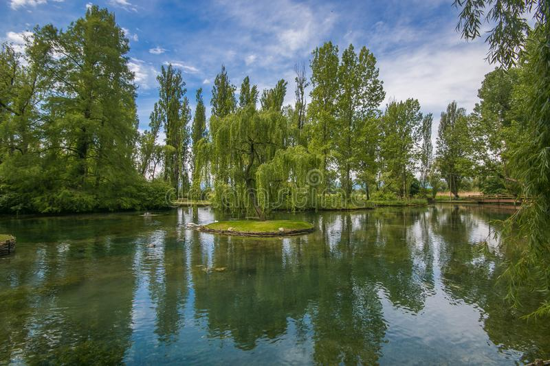 Photo of weeping willow reflection in the Fonti del Clitunno, Umbria royalty free stock photography