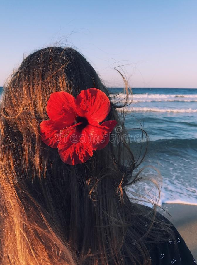 Photo of a Woman With Hibiscus on Her Head Facing Towards the Sea stock photo