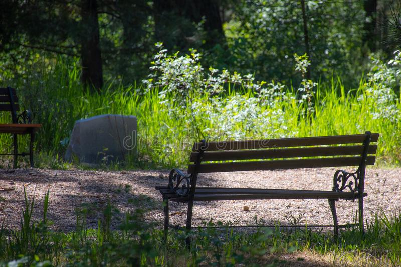 Photo of Wooden Bench on Park royalty free stock photography