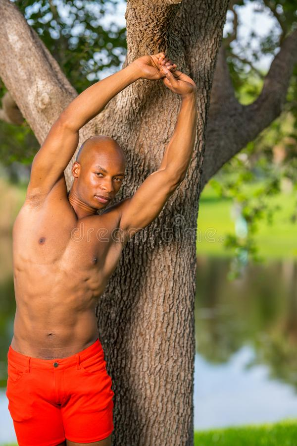 Photo of a young African American fitness model stretching in the park royalty free stock image
