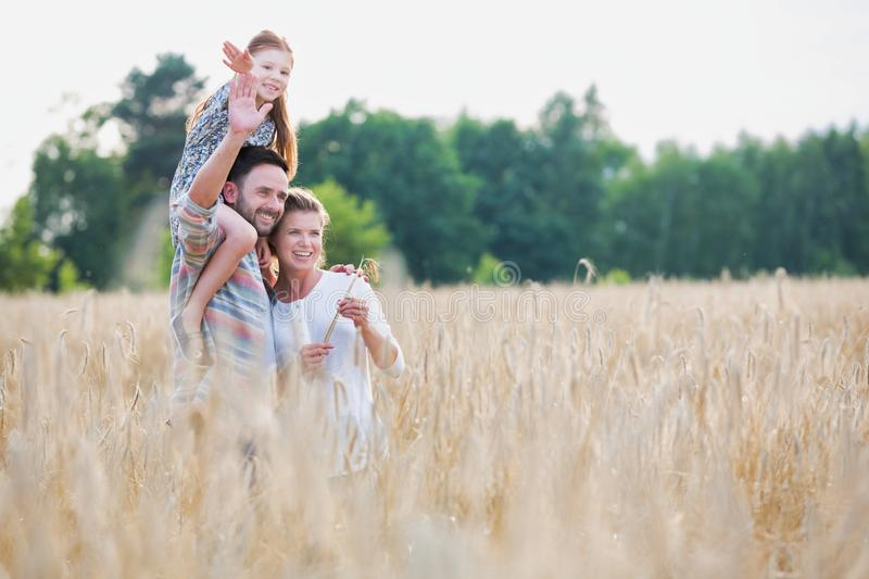 Young family walking through a field of corn on a summers day the father is carrying his younger daughter on his shoulders. Photo of Young family walking through stock images