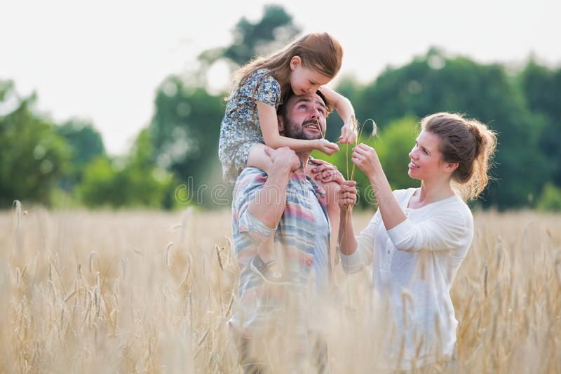 Young family walking through a field of corn on a summers day the father is carrying his younger daughter on his shoulders. Photo of Young family walking through royalty free stock photos