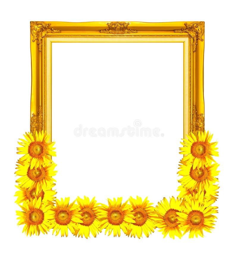 Photoframe dourado decorado com girassol imagens de stock