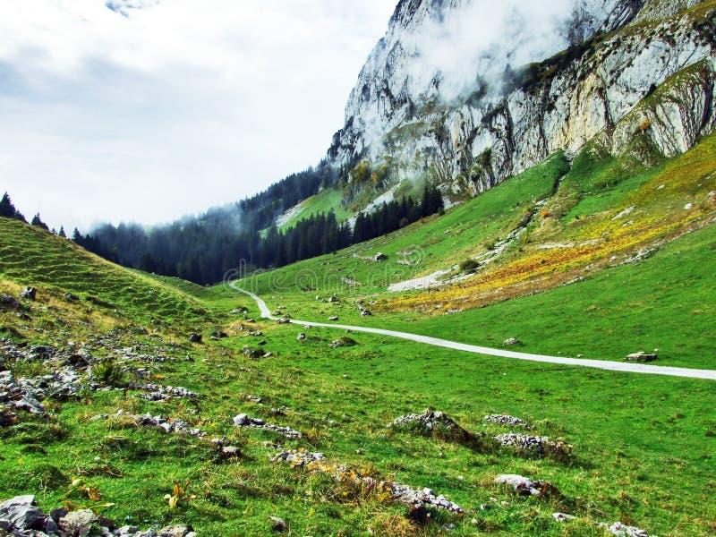 Photogenic выгоны и холмы горной цепи Alpstein стоковое фото rf