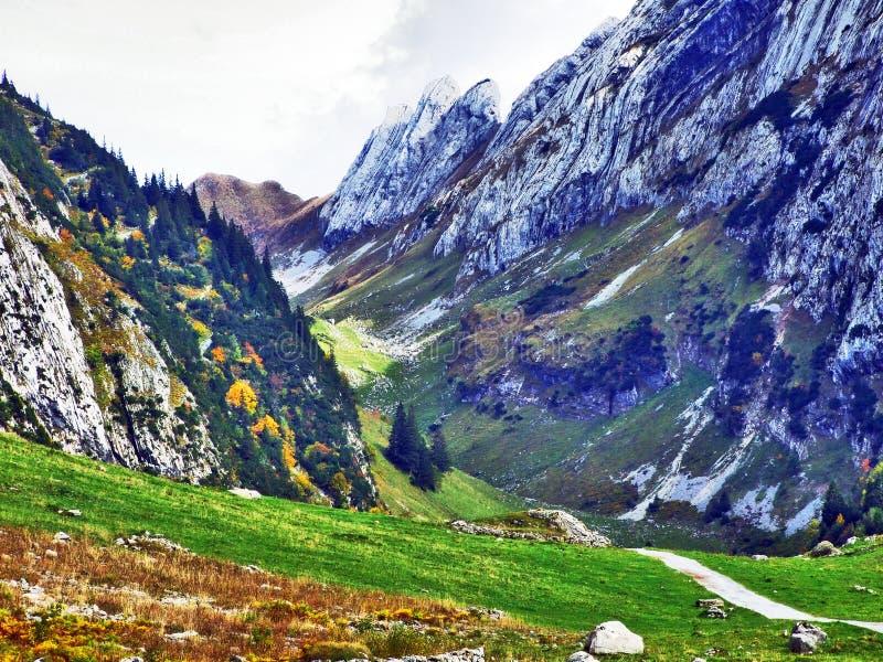 Photogenic выгоны и холмы горной цепи Alpstein стоковое изображение rf