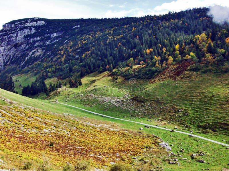 Photogenic выгоны и холмы горной цепи Alpstein стоковая фотография rf