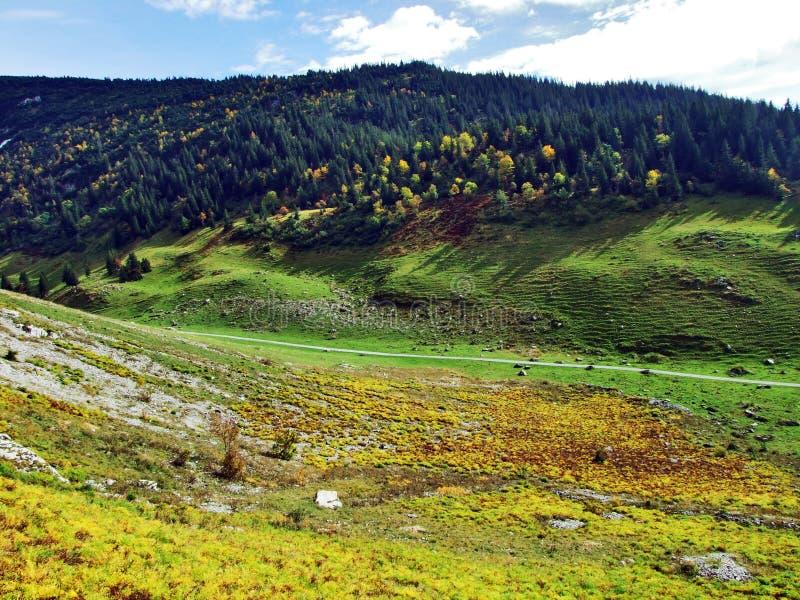 Photogenic выгоны и холмы горной цепи Alpstein стоковые фотографии rf