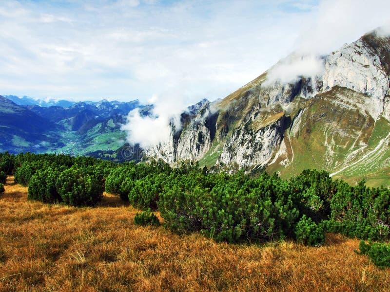 Photogenic выгоны и холмы горной цепи Alpstein стоковые изображения