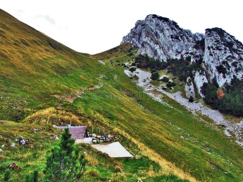 Photogenic выгоны и холмы горной цепи Alpstein стоковая фотография