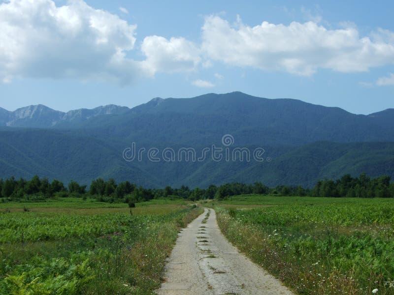 Photogenic гора Velebit стоковая фотография