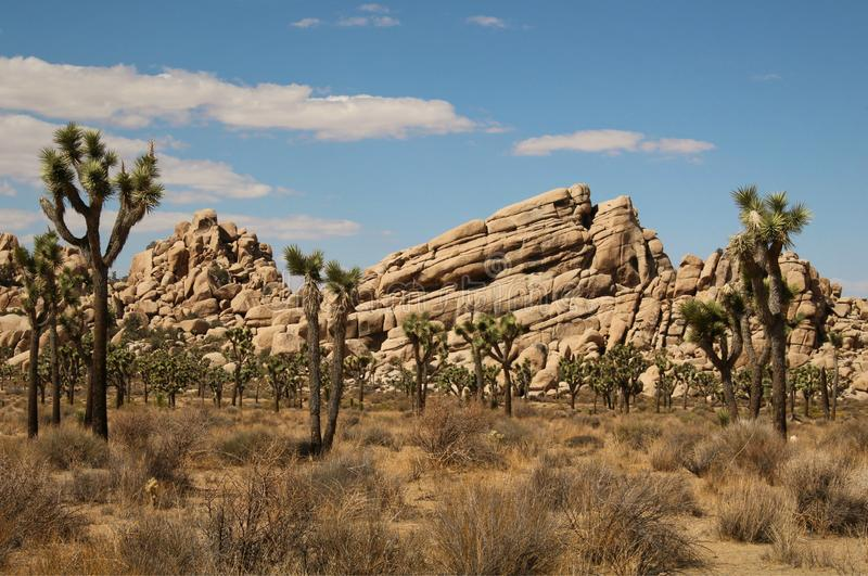 Photogenic Rock Formations at Joshua Tree National Park, California. Geological rock formations abound throughout Joshua Tree National Park and make a great stock photography