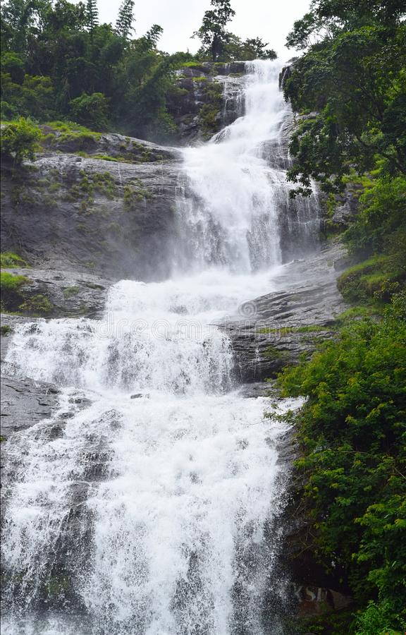 A Multi-step Waterfall Flowing from Height amidst Green Forest - Cheeyappara Falls, Idukki, Kerala, India. This is a photograph of Cheeyappara waterfalls on stock image