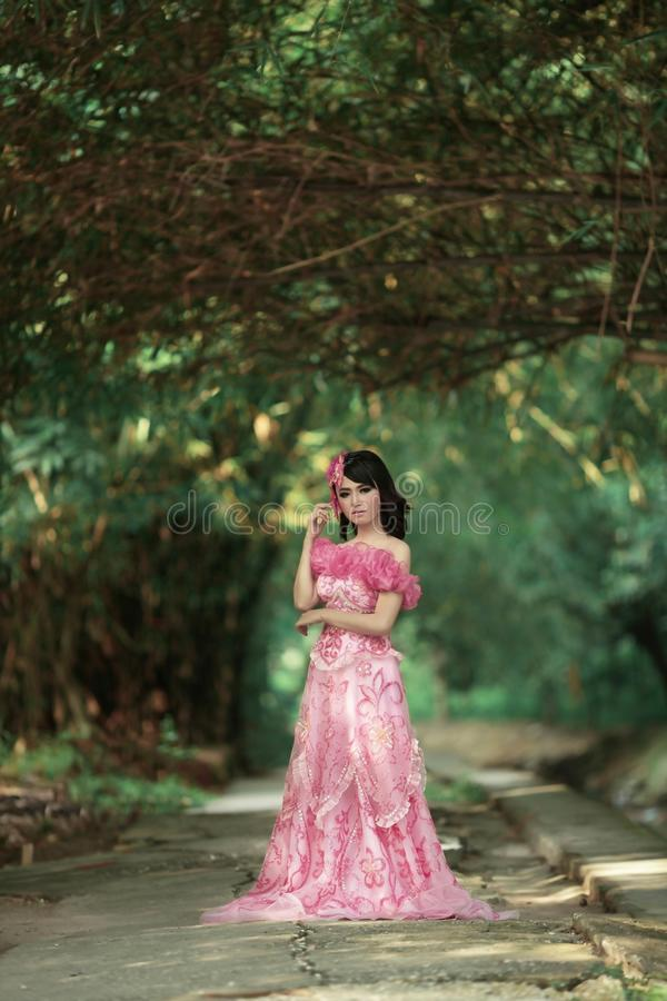Photograph, Nature, Pink, Gown royalty free stock images