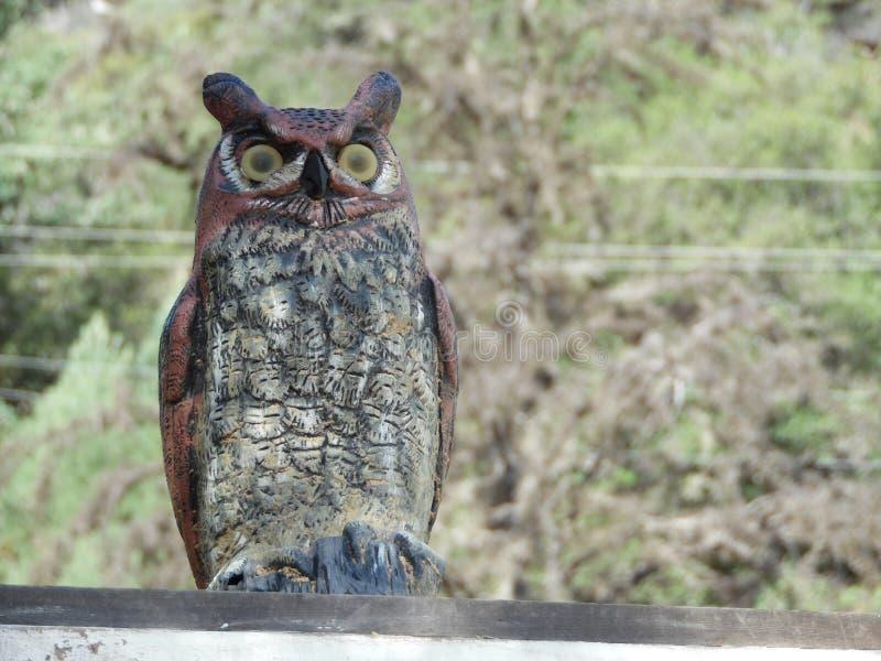 Photograph of Plastic Fake Owl Decoy Off Set. Photograph features a plastic owl decoy used to scare away predatory or nuisance animals. Replica plastic owls, are stock photos