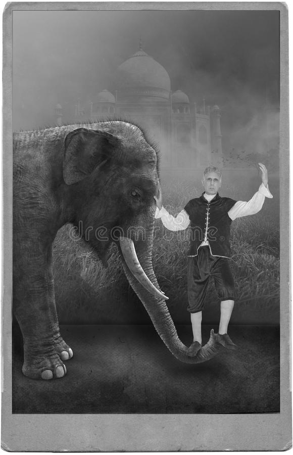 Vintage Circus Performer, Carnival, Elephant. Photograph portrait of a vintage circus or carnival performer posing with an elephant. The retro antique scene has royalty free stock photo