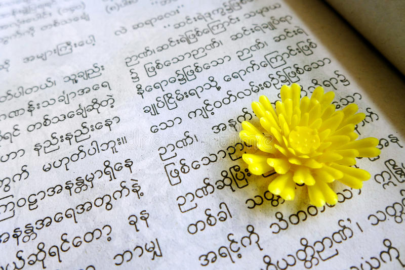 Reading burmese book. A photograph showing a book in the burmese language of Myanmar. Concept image for studying of foreign asian language. Horizontal format stock images