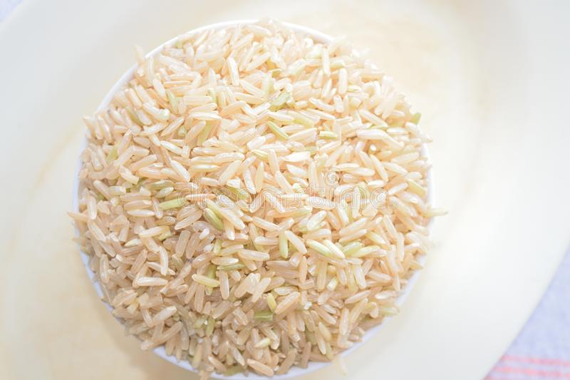 Uncooked brown rice 1 royalty free stock photos