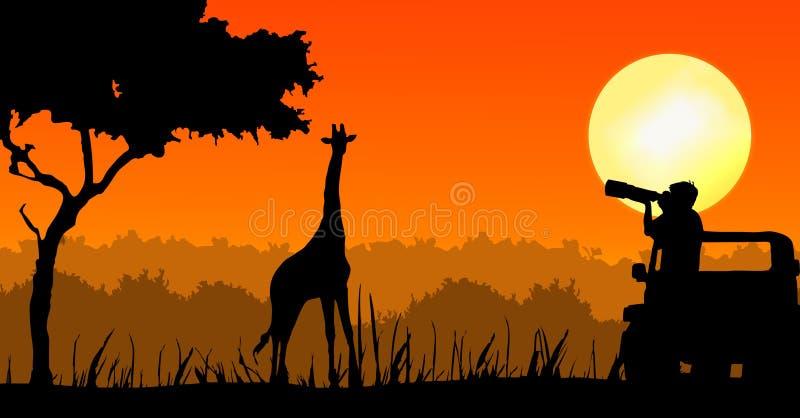 Photographe de faune dans le coucher du soleil illustration de vecteur