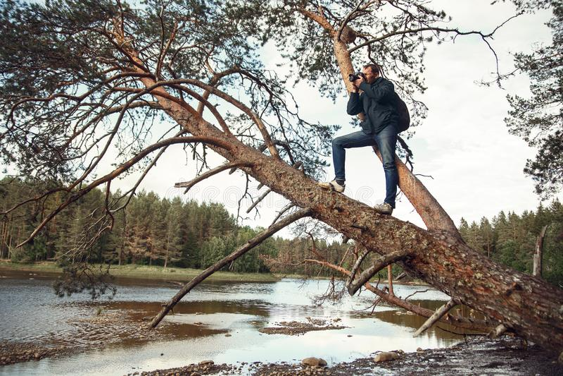 Photographe masculin photographiant une belle rivière de taiga, se tenant sur un pin tombé photographie stock
