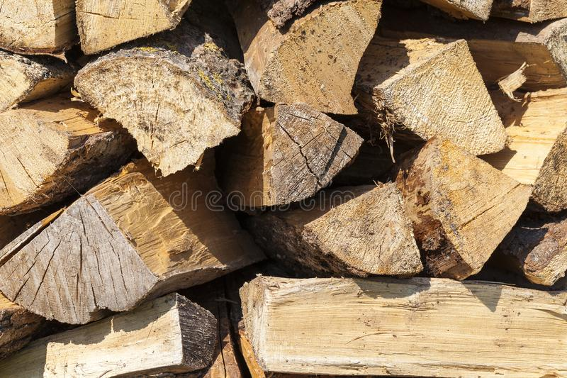 Trunk of a sawn wood. Photographed close-up of a yellow trunk of a sawn wood chopped into firewood stock photos