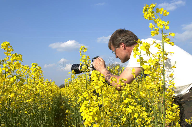 Download Photographer stock photo. Image of casual, camera, professional - 14074282