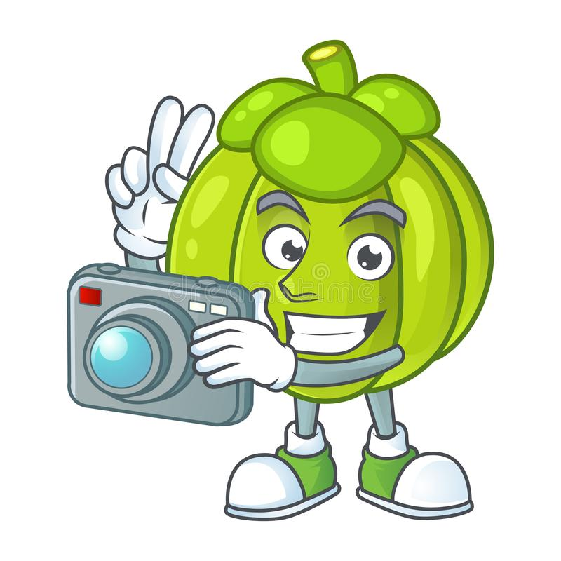 Photographer green pumpkin ripe on a white background. Vector illustration royalty free illustration
