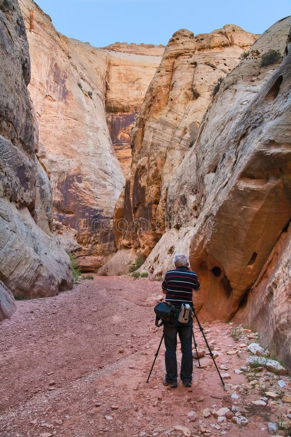 Photographer at The Narrows at Grand Wash, Capitol Reef. National Park, UT, USA royalty free stock image
