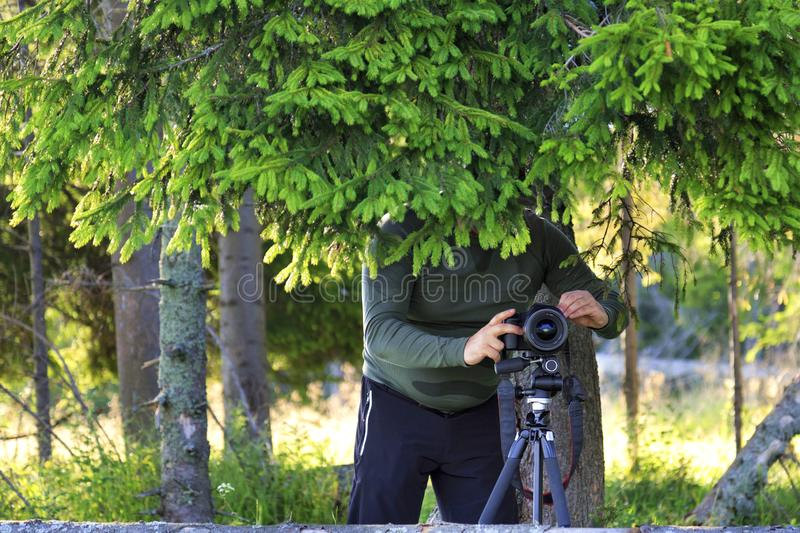 The photographer sets up the camera and hides behind the fir branches at the edge of the forest royalty free stock photo