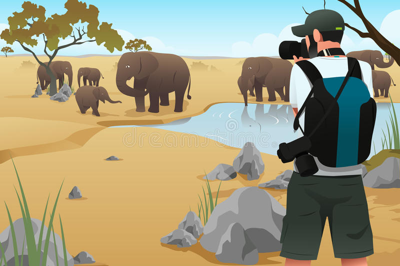 Photographer Taking Pictures. A vector illustration of photographer taking picture on wildlife animals vector illustration