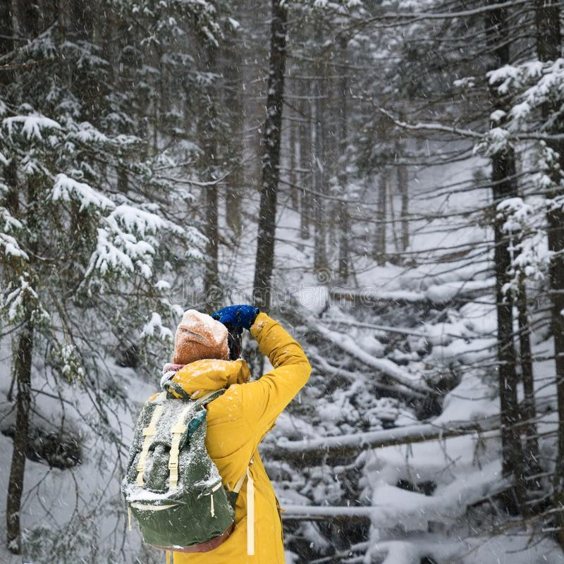 The photographer in winter forest royalty free stock photo