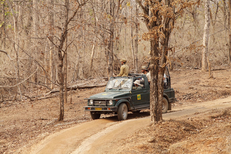 Photographers eagerly waiting for tiger sighting in Pench Tiger reserve. SEONI, INDIA-JUNE 26: Tourist moving in Safari jeep during game drive in Pench Tiger royalty free stock photo
