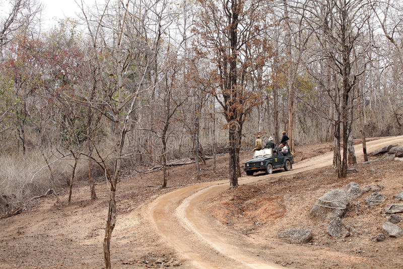 Photographers eagerly waiting for tiger sighting in Pench Tiger reserve. SEONI, INDIA-JUNE 26: Tourist moving in Safari jeep during game drive in Pench Tiger royalty free stock images