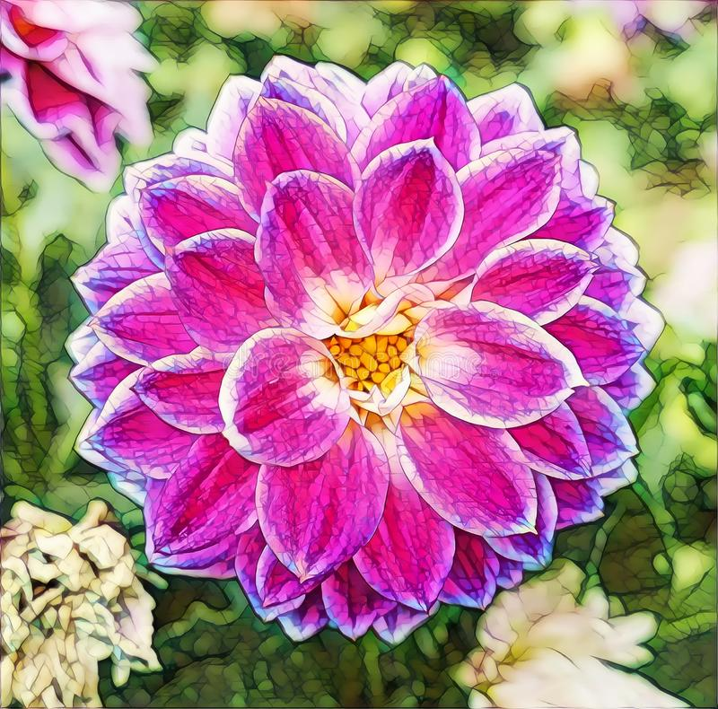 Photographic art picture of nice symmetric garden flowers close up. Photographic art picture of nice symmetric garden flowers stock illustration