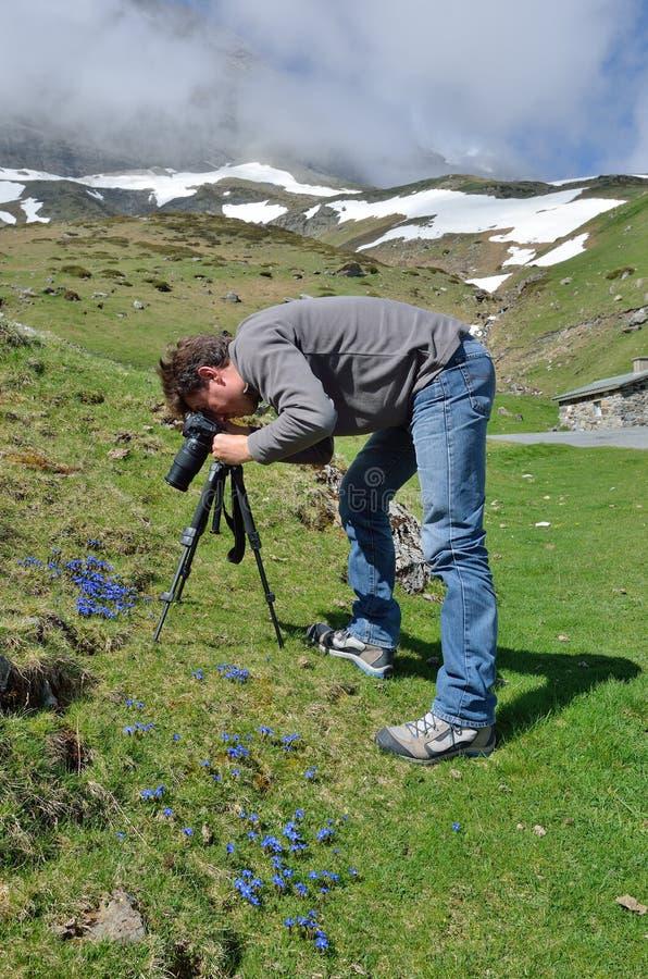 Photographie au printemps de Pyrénées image libre de droits