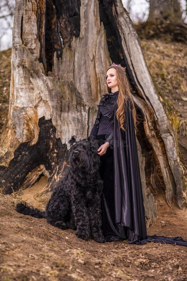 Photographie d'art Belle princesse dans la robe noire avec la couronne et son chien en Forest Against Big Burnt Tree pendant le p photos libres de droits