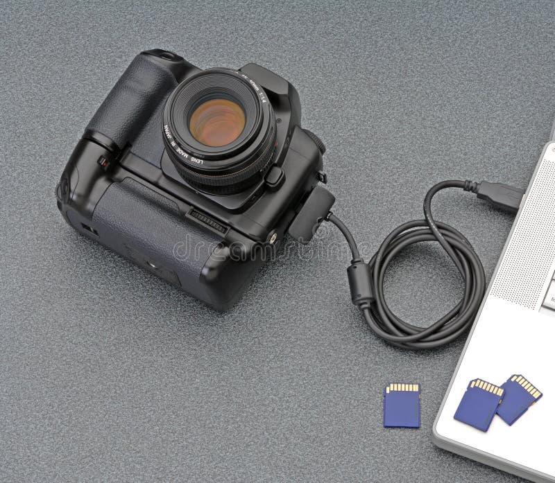 Photographie de Digitals image libre de droits