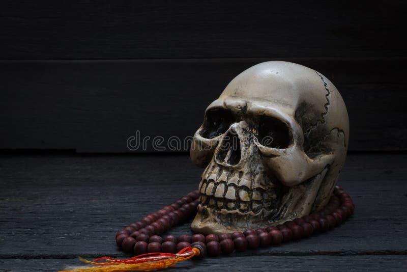 Photographie de la vie avec le crâne humain et mala toujours sur le backgr en bois photos stock