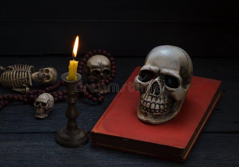 Photographie de la vie avec le crâne humain et mala toujours sur le backgr en bois image stock