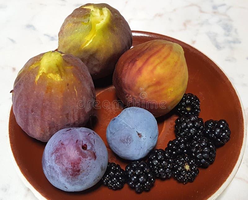Photographie des figues, des mûres, et des prunes images libres de droits