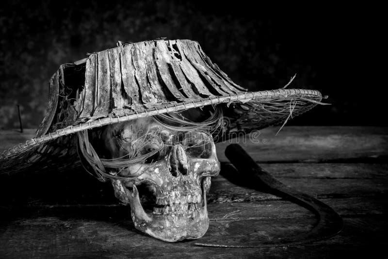 Photographie toujours noire et blanche de la vie avec les crânes humains sur le bois photos stock