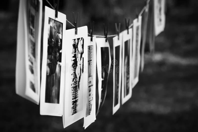 Photographies noires et blanches image libre de droits