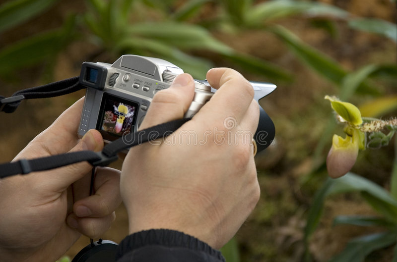Photographing stock photography
