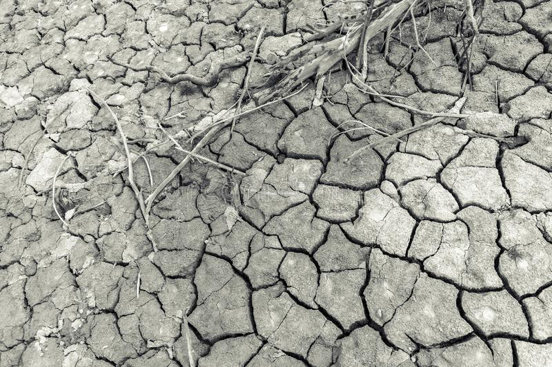 Background of dry and cracked earth. royalty free stock photos