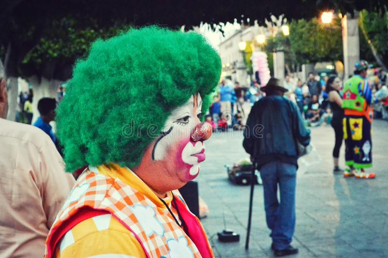 Photography of Clown With Green Hair royalty free stock photo