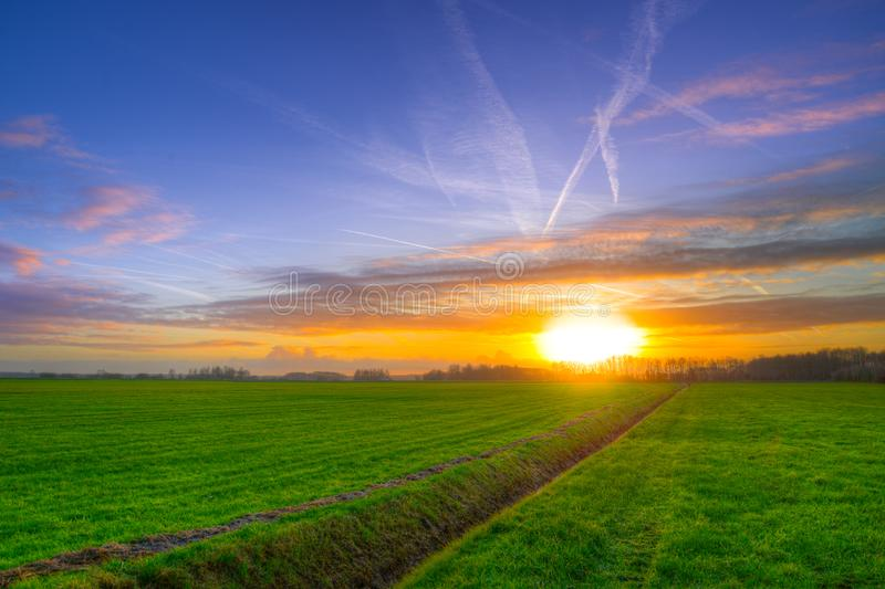 Photography of Green Grass Field during Golden Hour stock photography