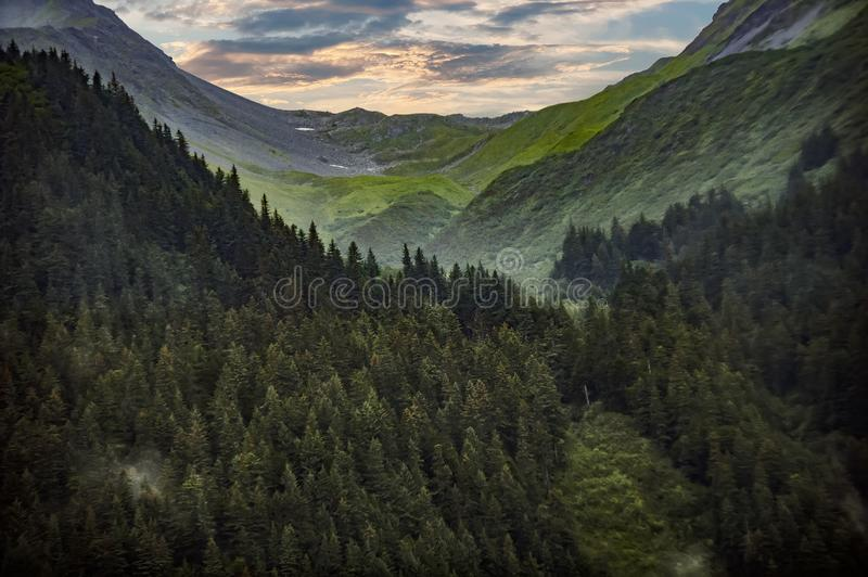 Photography Of Mountain Covered With Green Trees stock photo
