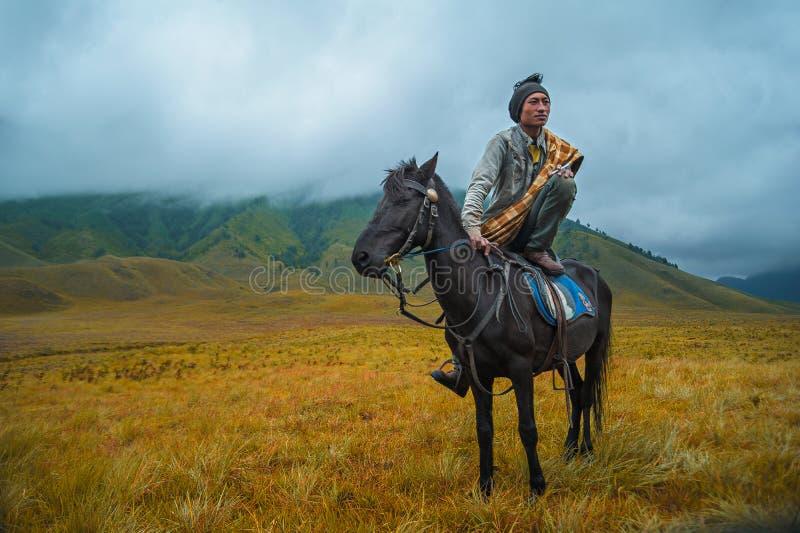 Photography of a Person Riding a Horse royalty free stock photos