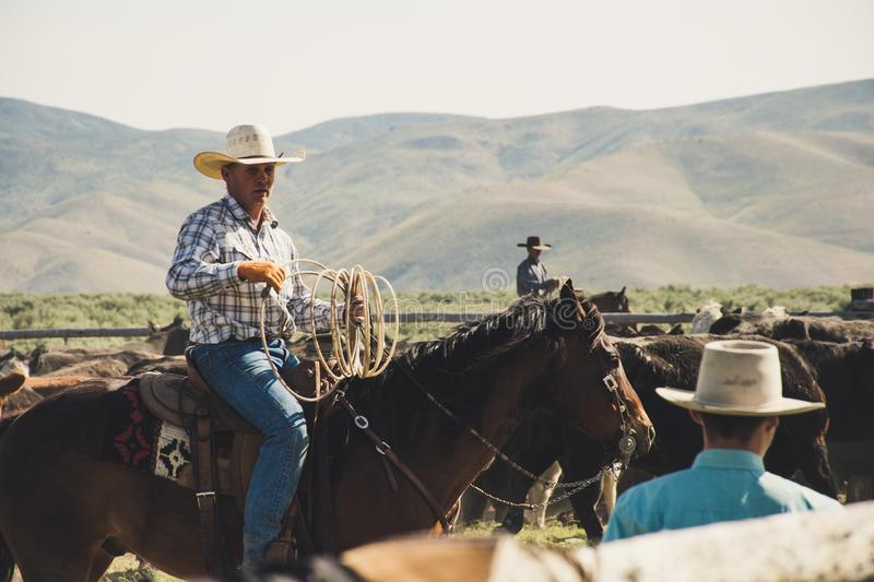 Photography of a Person Riding Horse royalty free stock photography