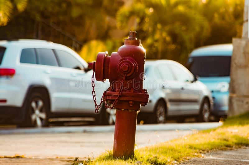 Photography of Red Fire Hydrant royalty free stock photography